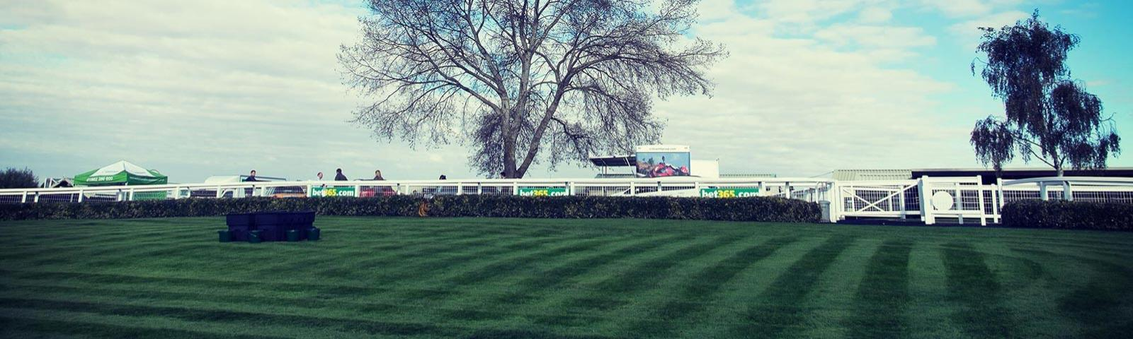 Parade ring at Hereford Racecourse.